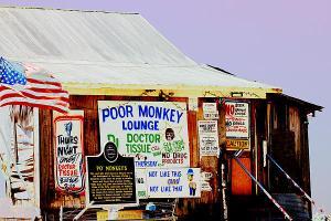 poor-monkeys-juke-joint-karen-wagner